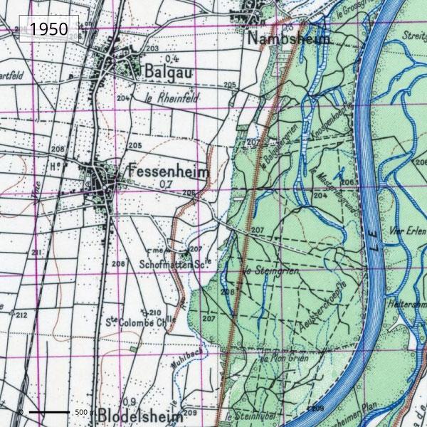 Territoire de Fessenheim - Carte 1950